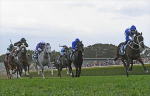 Winx and Hugh Bowman winning the Group 1 Winx Stakes at Randwick, picture Stevehart.com.au
