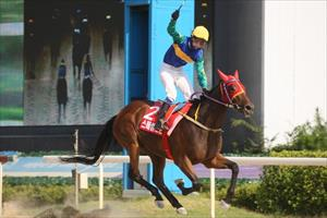 Kim Jeong-jun salutes the victory with Special Stone, picture Korea Racing Authority