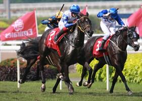 Jupiter Gold (Olivier Placais) stamps his class in the Emirates Singapore Derby, picture Singapore Turf Club