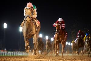 Arrogate (USA) winning the 2017 Group 1 Dubai World Cup Sponsored by Emirates Airline   (2000m) at Meydan, picture Dubai Racing Club and Andrew Watkins