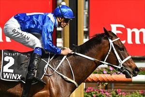 Winx and Hugh Bowman winning the Group 1 Turnbull Stakes (2000m) at Flemington, picture Quentinjlang.com