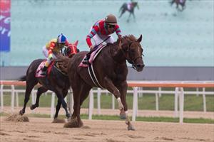 The Yutaka Take ridden Japanese runner Graceful Leap (JPN) winning the KOR Grade 1 Korea Sprint (1200m) at Seoul Racecourse, picture Hong Kong Jockey Club