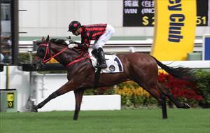 Thewizardofoz and Joao Moreira, picture Hong Kong Jockey Club