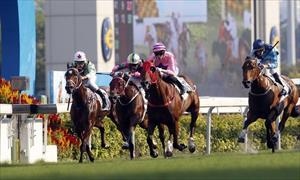 The Danny Shum-trained Lucky Year (No.6), ridden by Callan Murray, takes the G3 Sha Tin Vase (1200m), picture Hong Kong Jockey Club