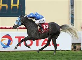 Ebraz winning in Qatar with Alan Munro in the saddle - photo from Qatar Racing and Equestrian Club
