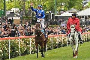 Hugh Bowman brings Winx (AUS) back to the winners stall after winning the Group 1 Cox Plate (2040m) at Moonee Valley, picture Quentinjlang.com