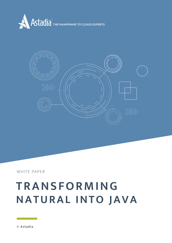 Natural into Java Transformation