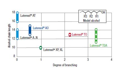 Branching Chart