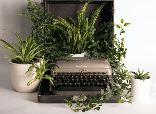An old typewriter that is surrounded by indoor plants.