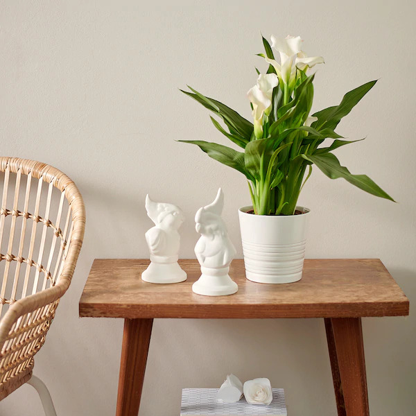 Muskot Plant Pot - Best Ikea Products To Buy