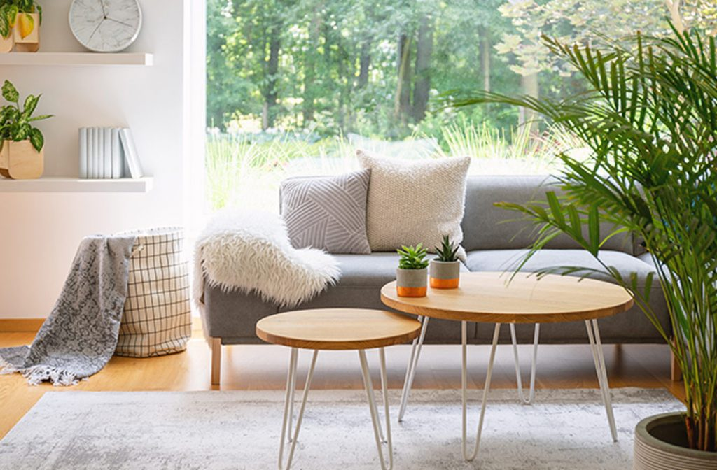 scandinavian-interior-nature-design