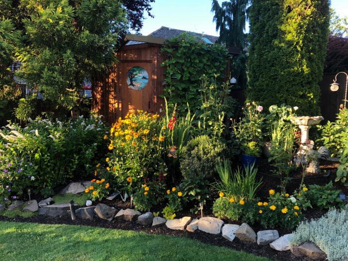 plants-gardening-ideas