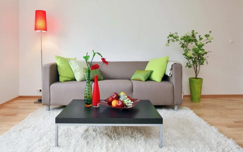 Minimalist-Living-Room-Area