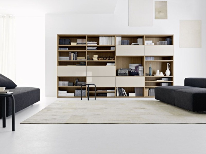 minimalist-living-room-best-storage-and-acessories