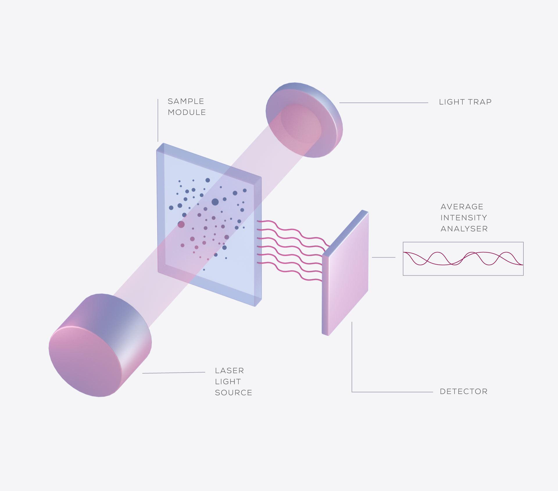Dynamic light scattering or DLS