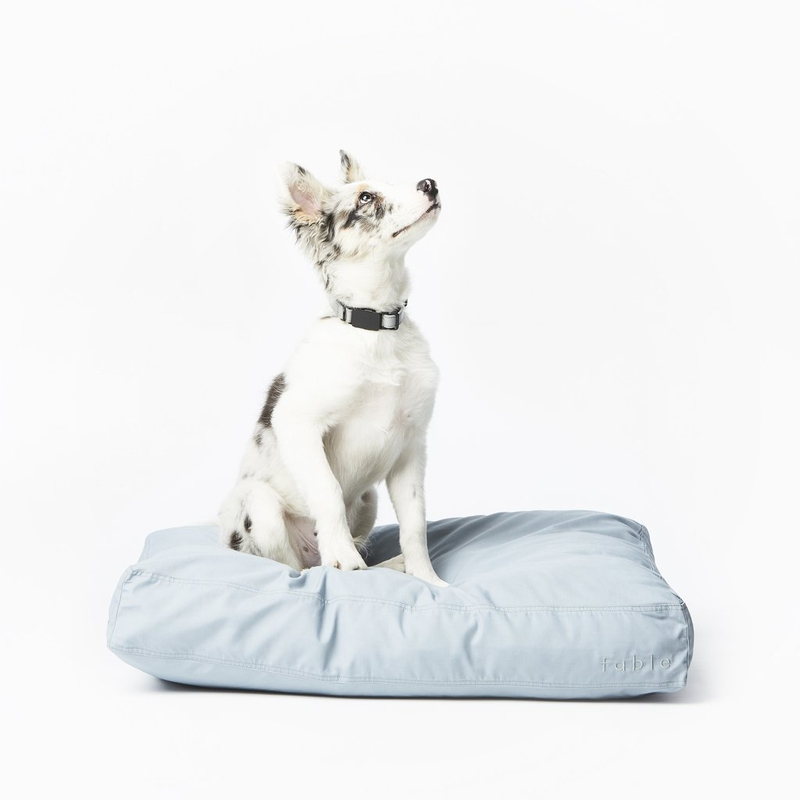 Fable Signature Dog Bed