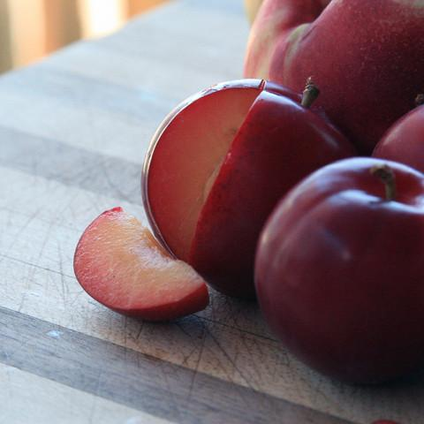 2021 Gotta Have My Pluots | Organic Fruit Club | 4 Shipments