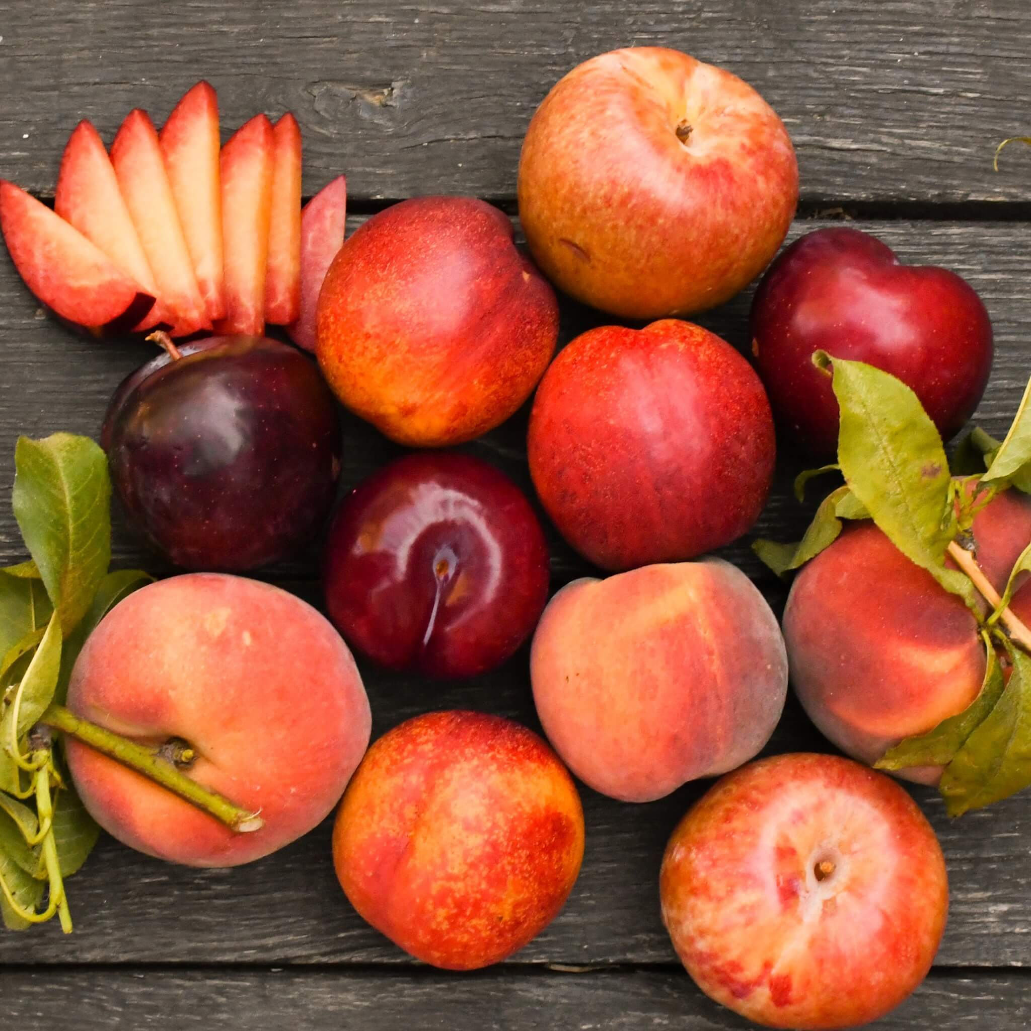 2021 Summer Sampler | Organic Fruit Club | 7 Shipments