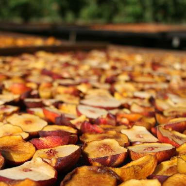 Dried Jade Nectarines