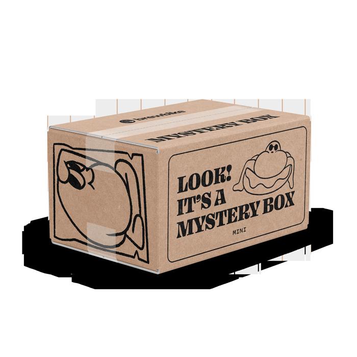 Mini Mystery Box