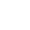 Bauer Financial Icon