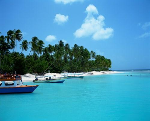 Tobago Boats