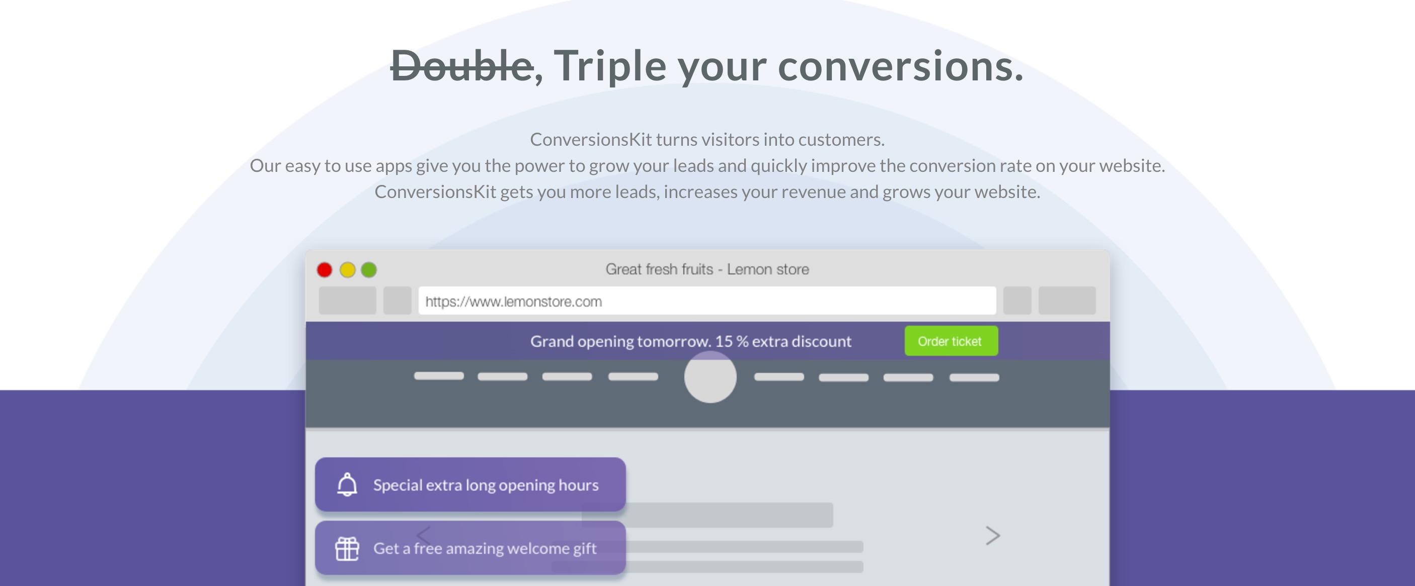 Conversion Principles Screenshot - conversion centered design