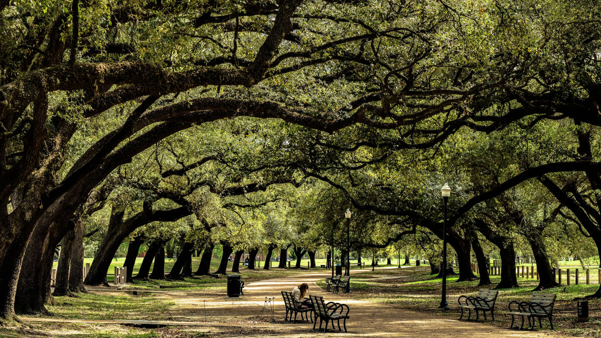 Photo of Memorial Park in Houston Texas