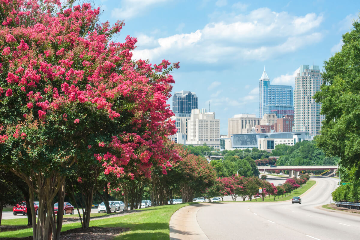 2021 Guide to the Best Places to Live in the Triangle