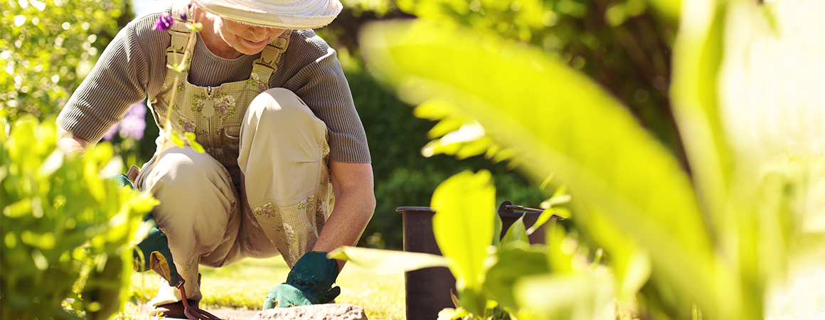 For the Love of Gardening: Why Now's the Perfect Time to Go for Green