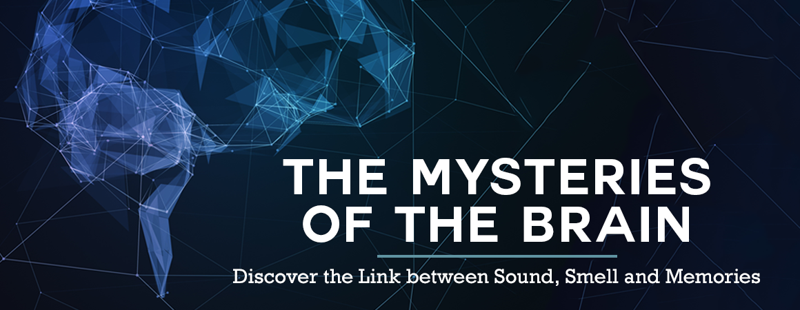 The Mysteries of the Brain: Discover the Link Between Sound, Smell and Memories