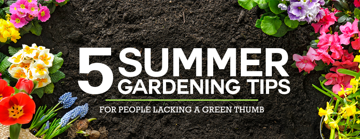 5 Summer Gardening Tips for People Lacking a Green Thumb