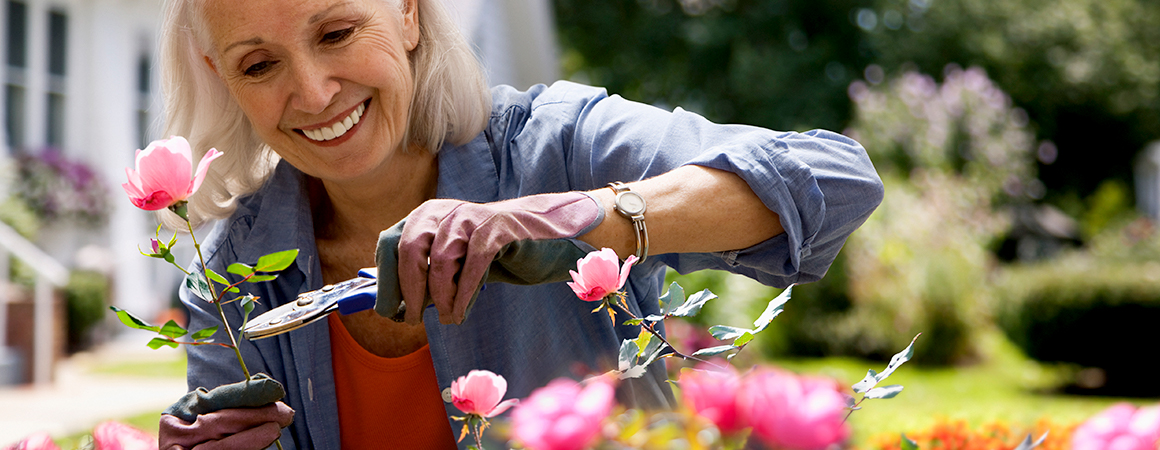 Spring in Bloom: 5 Tips for Amateur Gardeners