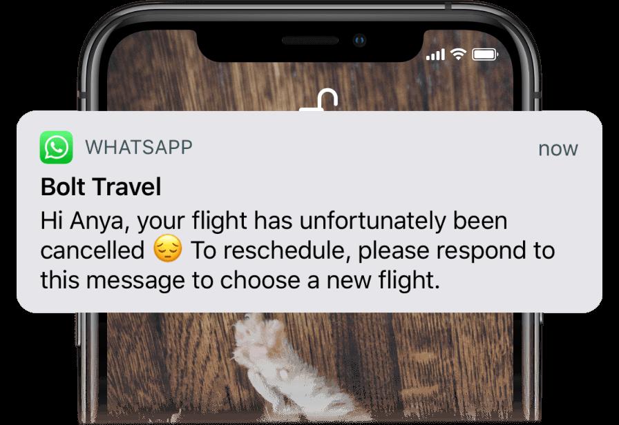 A Proactive WhatsApp notification on a phone