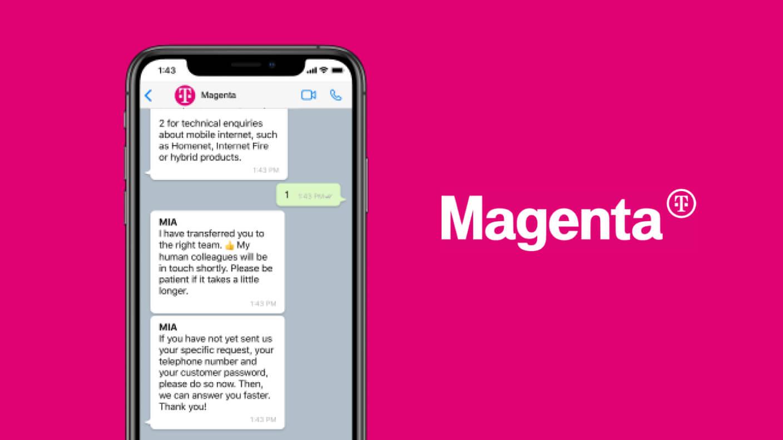 CSS Magento image