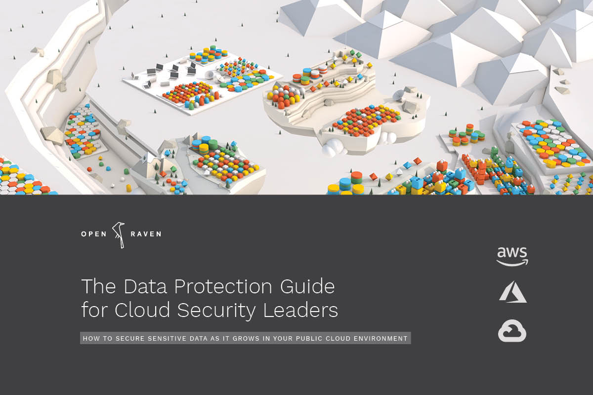 The Data Protection Guide for Cloud Security Leaders book