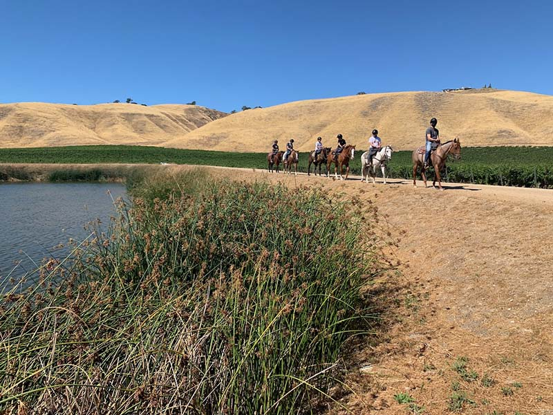 Multiple team members horseback riding together