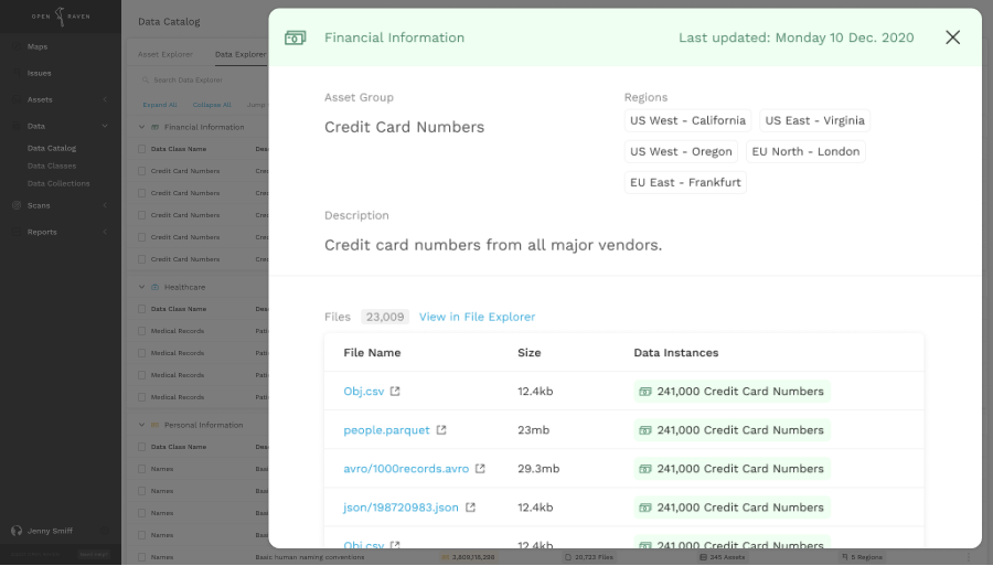 Open Raven product showing an asset group with credit cards