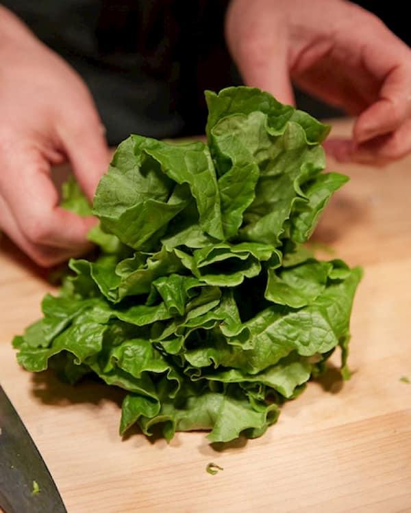 Hands arranging fresh lettuce
