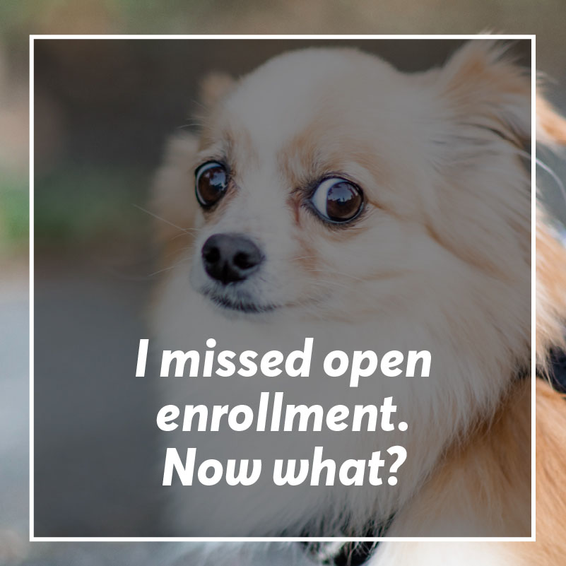 You reckless buffoon - luckily all is not lost. Here's how to enroll in a health insurance plan if you missed open enrollment