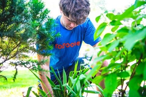 Helper Pulling Weeds