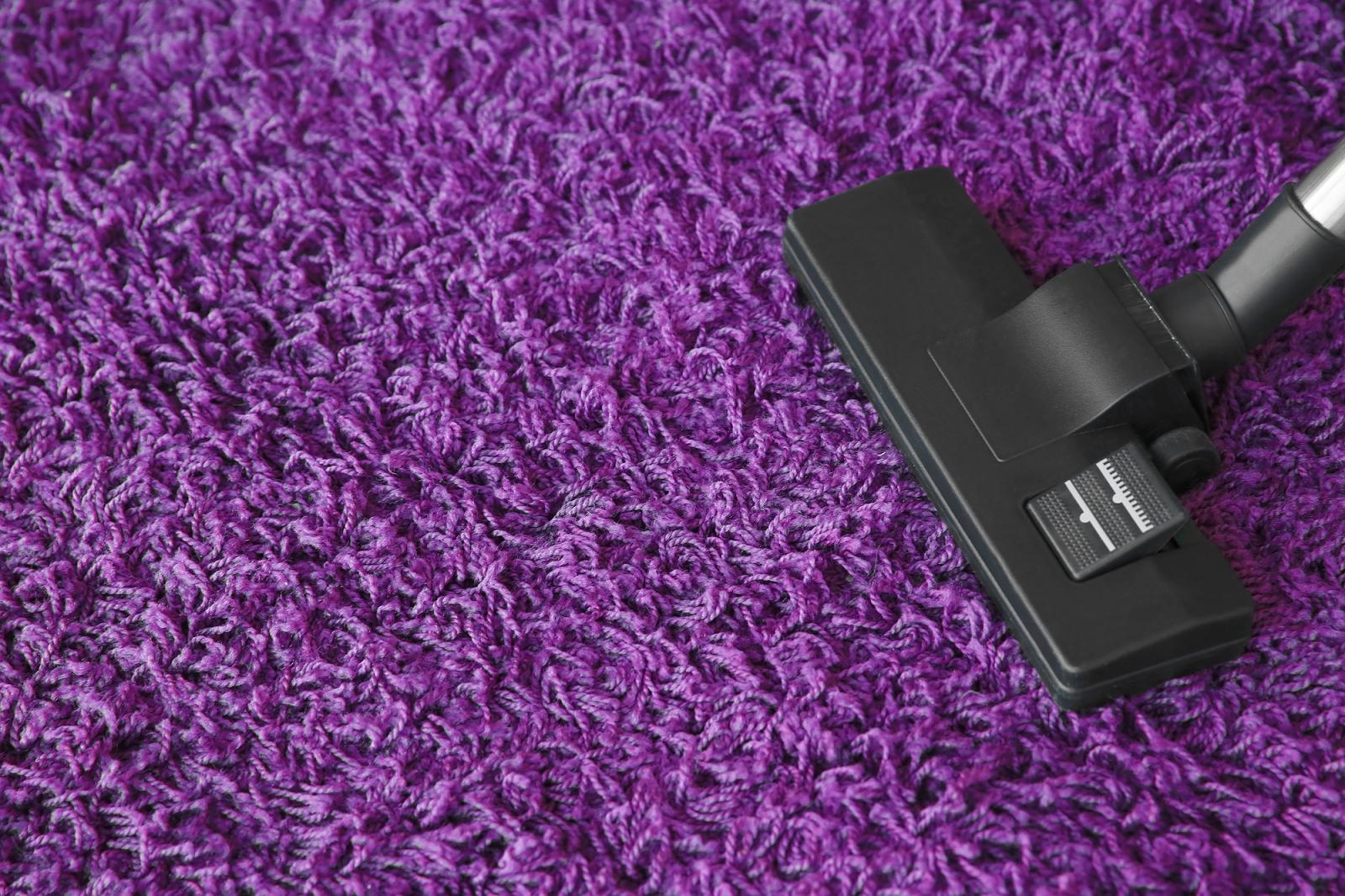 close up photo of black vacuum on purple carpet