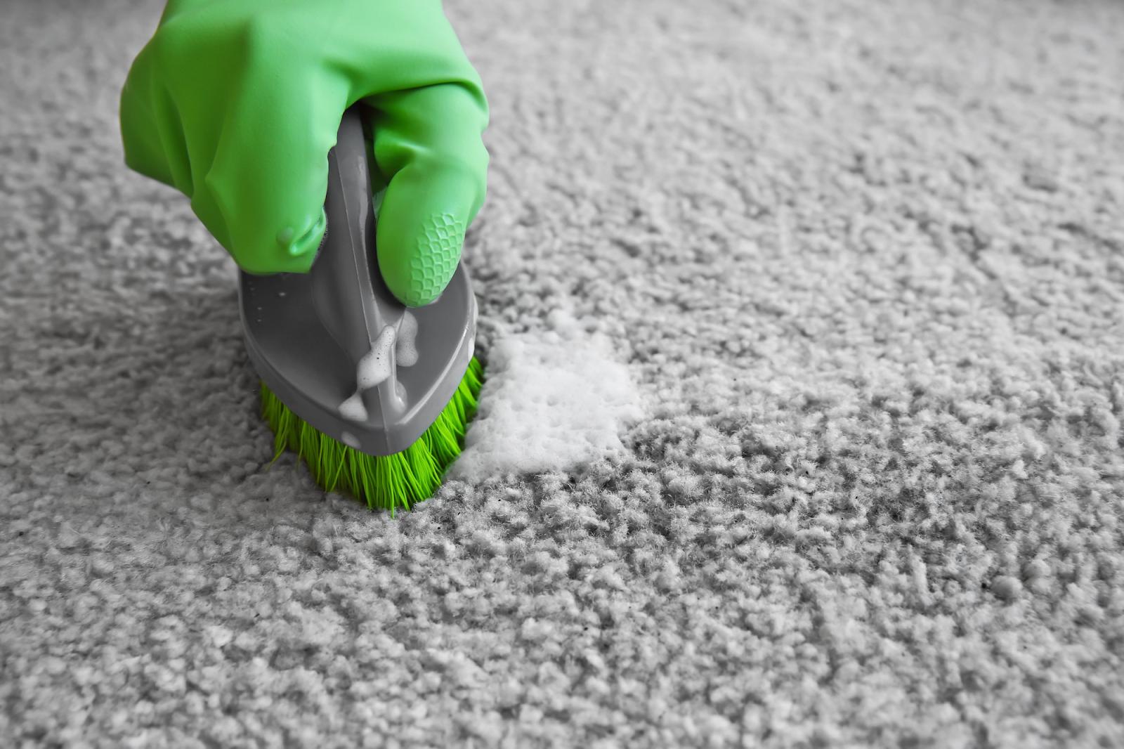 close up photo of brushing the carpet
