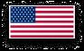 U.S.A. flag icon