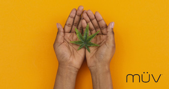 A Look Into the Evolution of Women and Cannabis