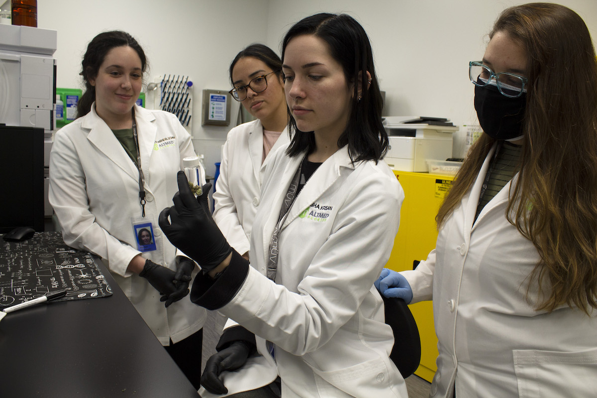 Women in Cannabis and Stem
