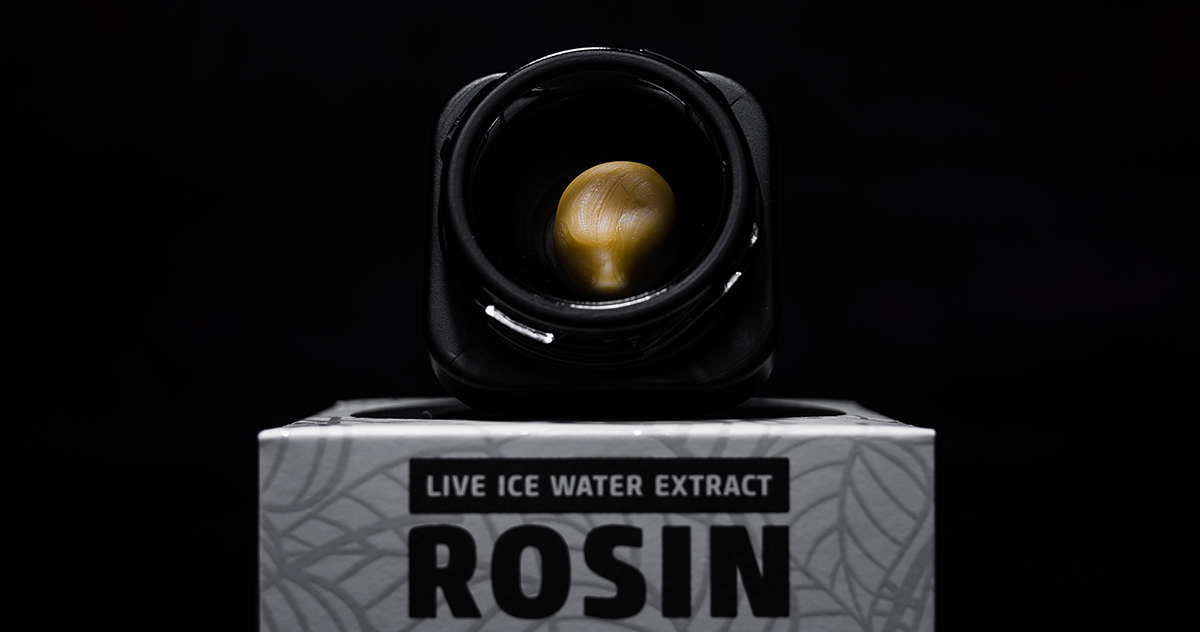 Hash, Rosin, Live Rosin – What's The Difference?