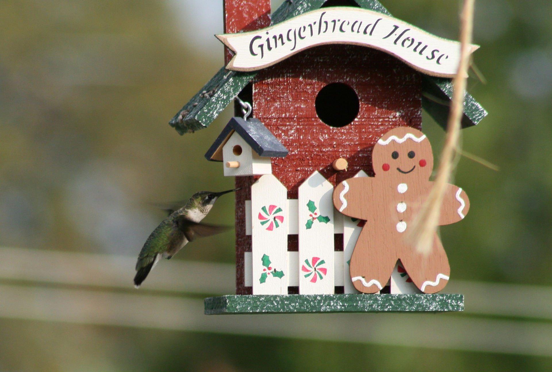 Pitfalls Of Homeowner's Insurance   Making Real Estate Fun