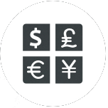 multi-currency icon