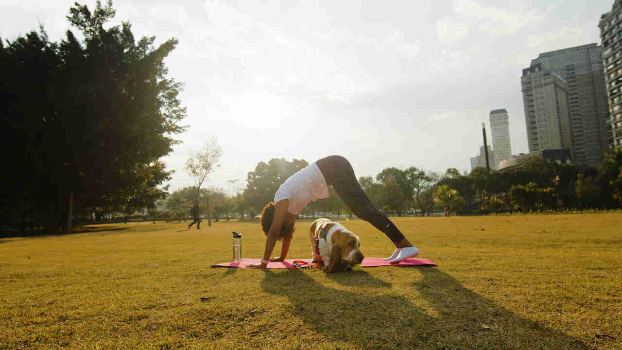 mulher fazendo exercício com um cachorro no parque